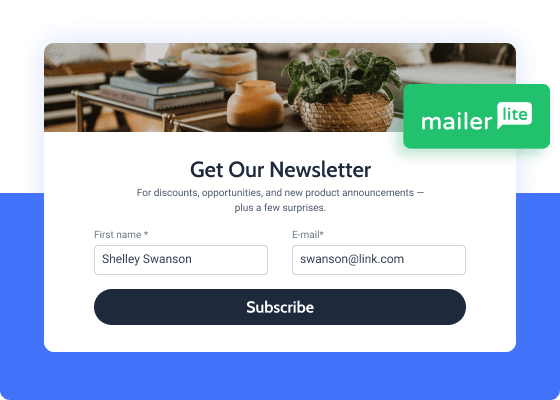 mailerlite newsletter form